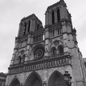Notre Dame - Julia Gone Rogue